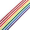 Лампасы №34 белые с разноцветными полосками 2,5см уп 10 м фото