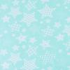 Мерный лоскут бязь плательная 1683/16 цвет мята фото