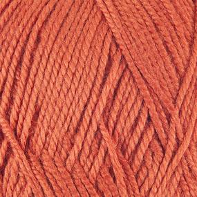 Пряжа для вязания ПЕХ Акрил 100гр/300м цвет 031 терракот фото