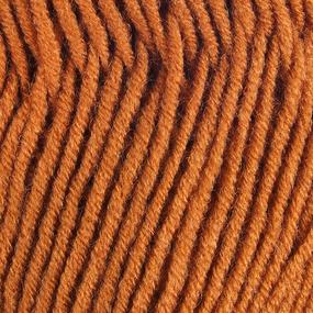 Пряжа для вязания Ализе LanaGold (49%шерсть, 51%акрил) 100гр цвет 234 рыжий фото