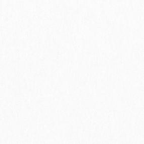 Ткань на отрез футер 3-х нитка компакт пенье начес цвет белый фото