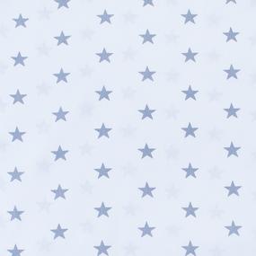 Мерный лоскут бязь плательная 150 см 1700А/17 цвет серый 5,7 м фото