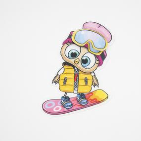 Нашивка Сова на сноуборде 3D 19*13см фото