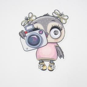 Нашивка Сова с фотоаппаратом бегающие глазки 19*16см фото