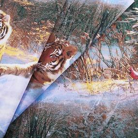 Маломеры бязь о/м ГОСТ 150 см 305/1 Уссурийский тигр 4.7 м фото