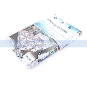Постельное белье бязь эконом 359 1.5 сп с 1-ой нав. 70/70 фото