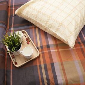 Постельное белье из бязи 11192/1 Пикник Евро фото