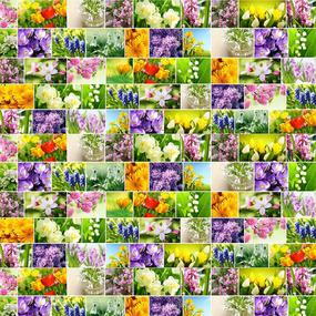 Рогожка 150 см 11550/1 Первоцветы фото