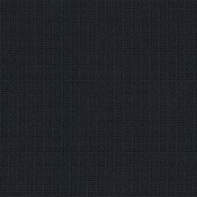 Вафельное полотно гладкокрашенное 150 см 165 гр/м2 цвет черный фото