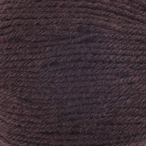 Пряжа для вязания ПЕХ Детский каприз 50гр/225м цвет 251 коричневый фото
