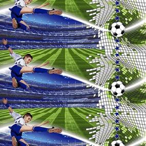Маломеры поплин 150 см 1693 Футбол 11 м фото