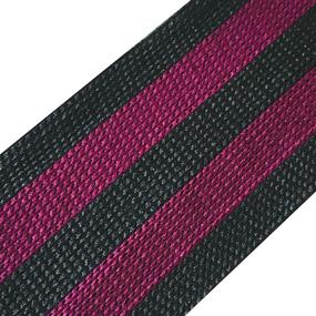 Лампасы №115 черный фиолетовый 4 см уп 10 м фото