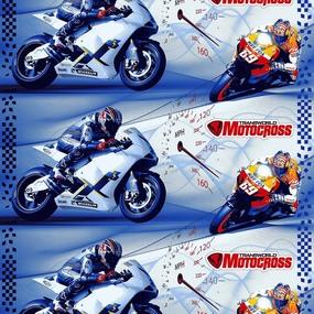 Маломеры поплин 150 см 1613 Мотокросс 11 м фото
