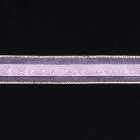 Лента декоративная 25 мм (9,14 м) TBY/ЛДК/QC-01.3 цвет 04 фото