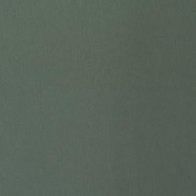 Ткань на отрез футер 3-х нитка компакт пенье начес цвет светло-зеленый фото