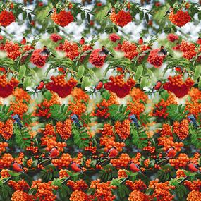 Бязь Комфорт 220 см набивная Тейково рис 6735 вид 1 Снегири фото