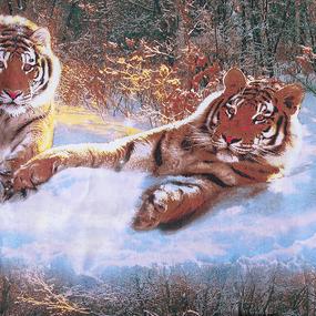 Наволочка бязь 305/1 Уссурийский тигр 70/70 фото