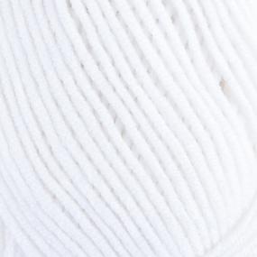 Пряжа для вязания Ализе LanaGold (49%шерсть, 51%акрил) 100гр цвет 55 белый фото