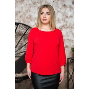 Блуза 0184-05 цвет Красный р 46 фото